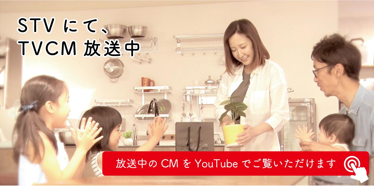 STVでTVCM放送中